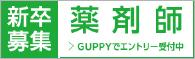 新卒募集 薬剤師 > GUPPYでエントリー受付中
